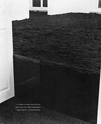 Ecologies, Environments, and Energy Systems in Art of the 1960s and    1970s