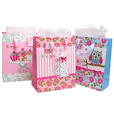 Party / Birthday Gift Bags and Tissues - Beautiful Floral Theme - Assorted Set of 3