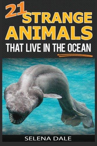 21 Strange Animals That Live In The Ocean: Extraordinary Animal Photos &...
