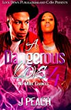 img - for A Dangerous Love 4: No More Chances (Volume 4) book / textbook / text book