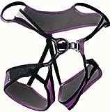 EDELRID Loopine pebbles-violet (Size: S) climbing belt
