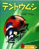 ドキドキいっぱい!虫のくらし写真館〈7〉テントウムシ
