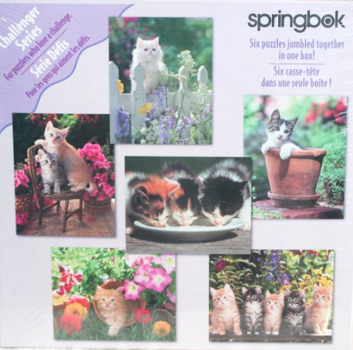 SPRINGBOK SIX PUZZLES IN ONE BOX