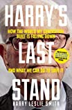 Harrys Last Stand: How the World My Generation Built is Falling Down, and What We Can Do to Save It