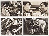 映画スチール 「ヤングおー!おー!日本のジョウシキです」白黒7枚