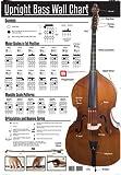 515yBuaXWsL. SL160  Upright Bass Wall Chart