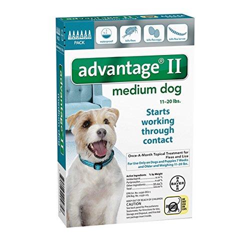 Bayer Advantage II, Dog, 11-20 lbs, 6 month treatment (Dog Advantage Flea compare prices)
