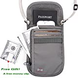 Passport Wallet - Passport Holder - Travel Wallet with RFID Blocking for Security (Gray)