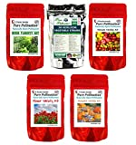 Non GMO Heirloom Vegetable, Herb, Pumpkin, Tomato, Flower Seeds 64 Varieties 67 Seed Pack All Natural Emergency Seed Bank MRE