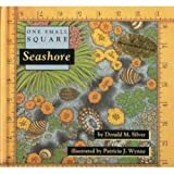Seashore (One Small Square)