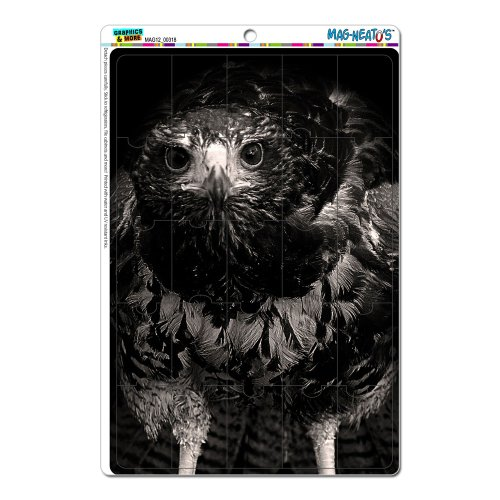 Graphics And More Hawk On Black And White Raptor Avian Mag-Neato'S Novelty Gift Locker Refrigerator Vinyl Puzzle Magnet Set front-581389