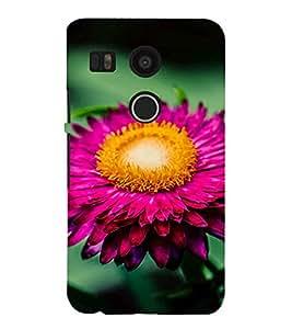 EPICCASE Pretty flower Mobile Back Case Cover For LG Google Nexus 5X (Designer Case)
