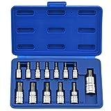 Neiko®  10071A Torx Bit Socket Set, T8 - T60, S2 Steel | 13-Piece Set