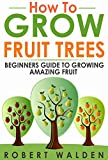 How to Grow Fruit Trees - Beginners Guide to Growing Amazing Fruit