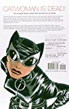 Image of Catwoman Vol. 1: Trail of the Catwoman