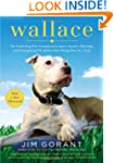Wallace: The Underdog Who Conquered a...