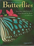 The Encyclopedia of Butterflies