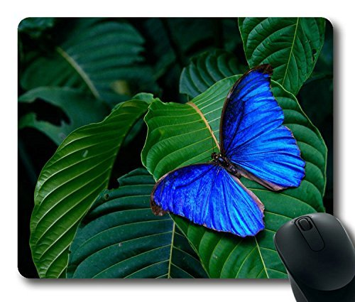 nice-forest-blue-butterfly-easter-thanksgiving-personlized-masterpiece-limited-design-oblong-mouse-p