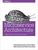 img - for Microservice Architecture: Aligning Principles, Practices, and Culture book / textbook / text book
