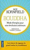 Bouddha - Mode d'emploi pour une révolution intérieure...