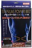 JTW チタンパワーベルト Sサイズ W0100  4541066 111607