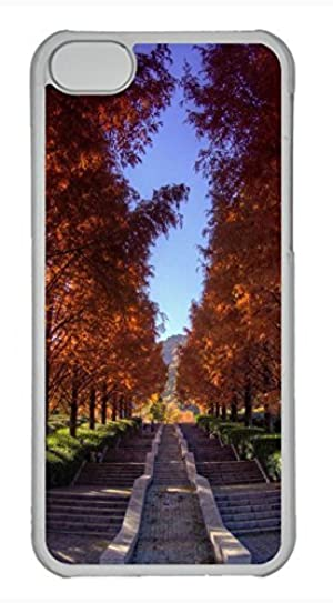 iPhone 5c case, Cute Beautiful Stairs In The Park iPhone 5c Cover, iPhone 5c Cases, Hard Clear iPhone 5c Covers