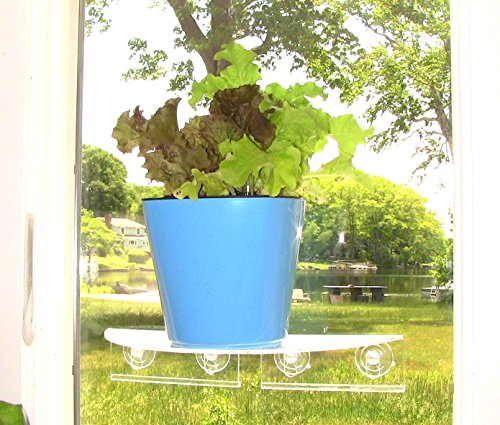 Aquaphoric Self Watering Planter 7 Fiber Soil