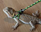 Adjustable Reptile LeashTM Harness Great for Reptiles or Small Pets - 100% Adjustable Most Sizes (6 Feet)