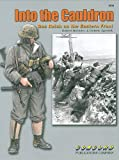 img - for 6534: Into the Cauldron: Das Reich on the Eastern Front book / textbook / text book