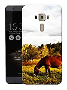 """Horse And ValleyPrinted Designer Mobile Back Cover For """"Asus Zenfone 3 Ze552kl"""" (3D, Matte, Premium Quality Snap On Case)"""