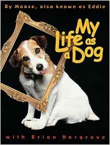 Amazoncom My BoringAss Life New Edition The