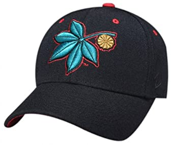 ohio state buckeyes leaf black dhs hat