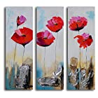 TJie Art Hand Painted Mordern Oil Paintings Poppy Rocks 3-Piece Canvas Wall Art Set Three-piece painting in modern floral theme
