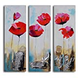 TJie Art Hand Painted Mordern Oil Paintings Poppy Rocks 3-Piece Canvas Wall Art Set Three-piece painting in modern floral theme,Handcrafted with acrylic paints on canvas,Gallery wrapped on inch-thick wooden frame