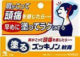 【第3類医薬品】塗るズッキノン 15g ランキングお取り寄せ