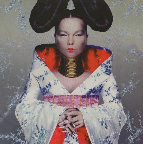 Bjork - Homogenic [Vinyl] - Zortam Music