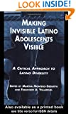 Making Invisible Latino Adolescents Visible: A Critical Approach to Latino Diversity (MSU Series on Children, Youth and Families)