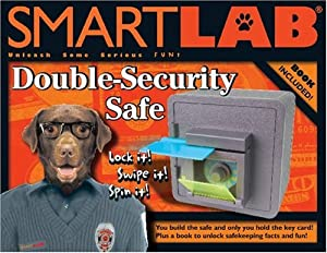 Smart Lab Double Security Safe