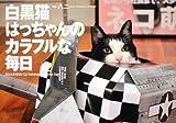 白黒猫はっちゃんのカラフルな毎日