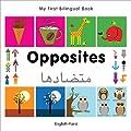 My First Bilingual Book - Opposites: English-Farsi