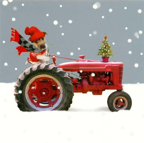 home-for-christmas-jack-russell-dog-on-a-tractor-pack-of-10-small-square-xmas-cards
