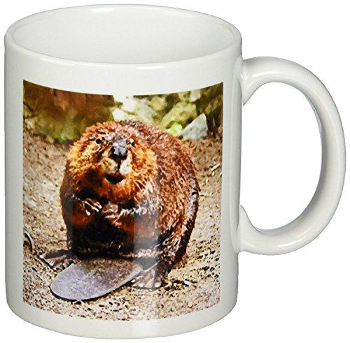 Beaver Coffee Mug 11 Ounce
