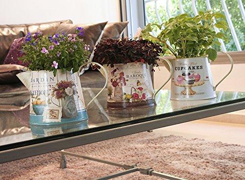 Janazala Small Flower Pots Indoor Decorative, Indoor Flower Pots, Set of 3 (Metal, Colorful) 4