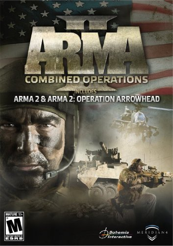 ARMA 2: DayZ on Microsoft Windows
