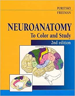 neuroanatomy guide A simple guide to neuroanatomy for psy 350 by cassie khurana.