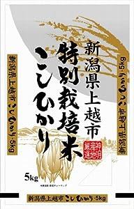 【精米】新潟県上越市産 特別栽培米白米 こしひかり 5kg 平成24年産