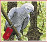 DMC BK1129 African Grey Parrot Cross Stitch Kit