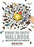 Christopher Lloyd The What on Earth? Wallbook of Big History (MINI EDITION): A Timeline from the Big Bang to the Present Day