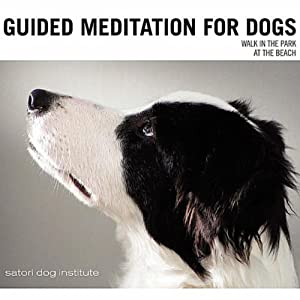 Guided Meditation For Dogs from Satori Dog Institute