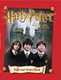 Image of Harry Potter and the Chamber of Secrets: Pull-out Poster Book